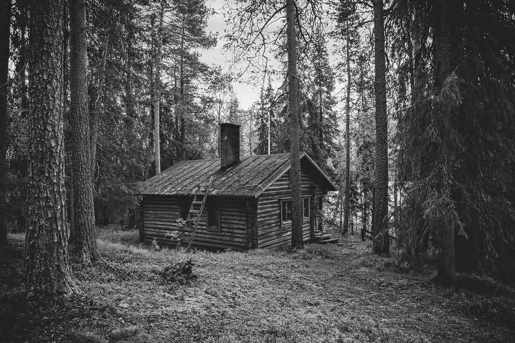 Zeigt eine Hütte in einem Nadelwald